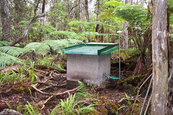 A concrete box with a green roof. Green wires protrude from the box in the rainforest-looking area.
